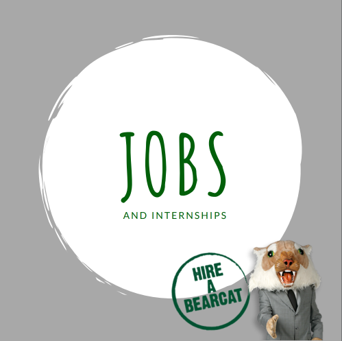 Internship & Job Opportunities
